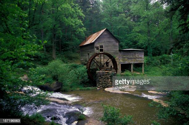 Old mill with water wheel in lush forest