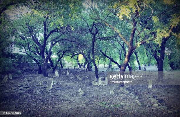 old ottoman tombstones in graveyard,alacati village. - emreturanphoto stock pictures, royalty-free photos & images