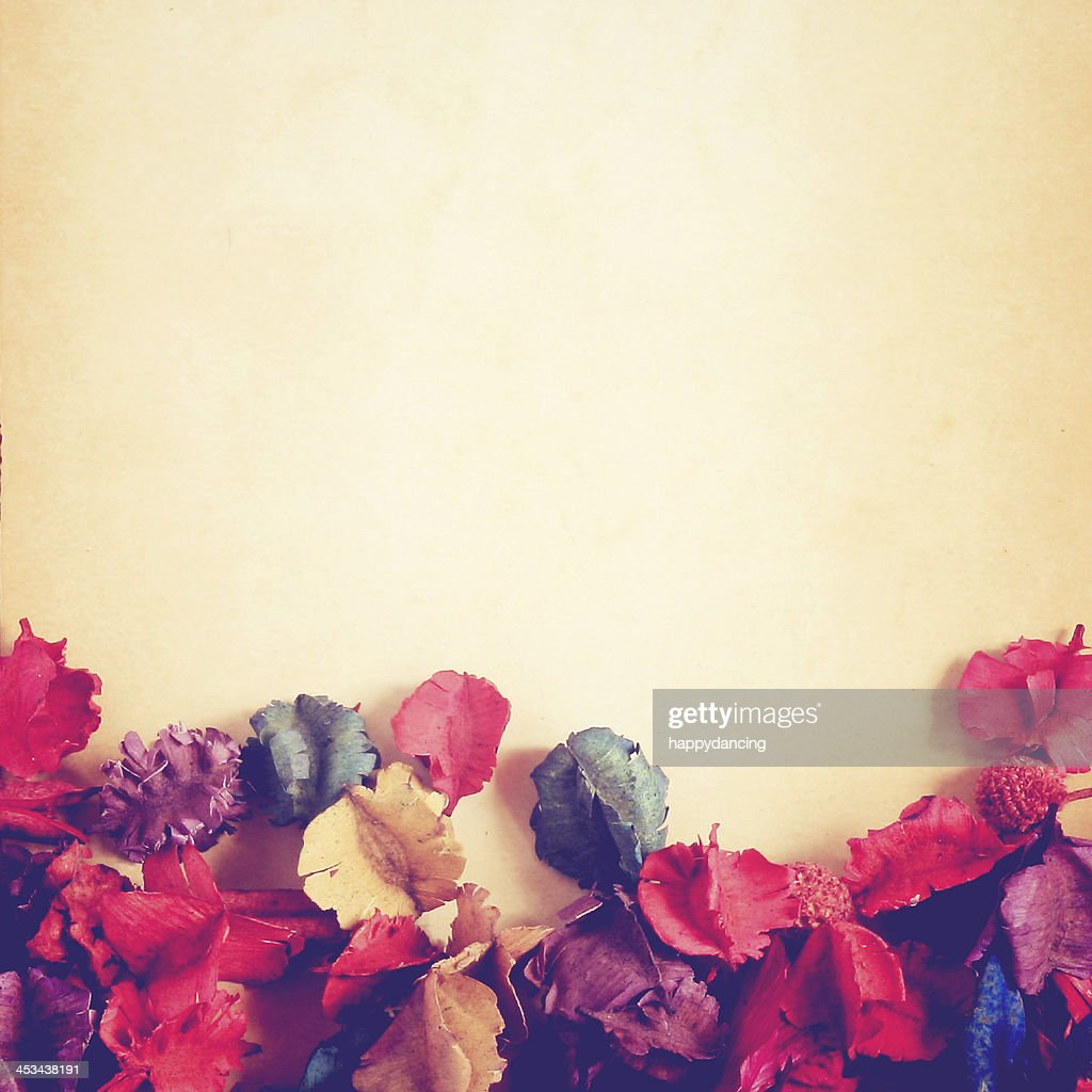 Old Paper Background With Dry Flower Retro Filter Effect Stock Photo