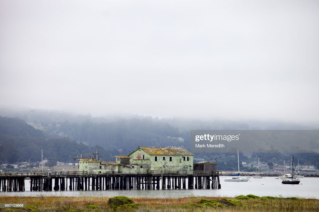 Old pier and buildings on a foggy day at Half Moon Bay : Stock-Foto