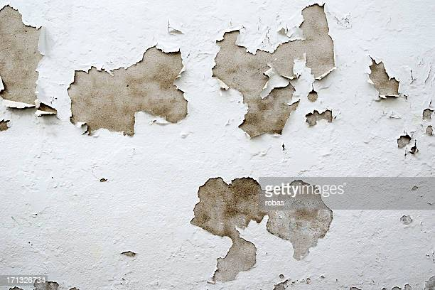 old plastered wall - degeneration stock photos and pictures