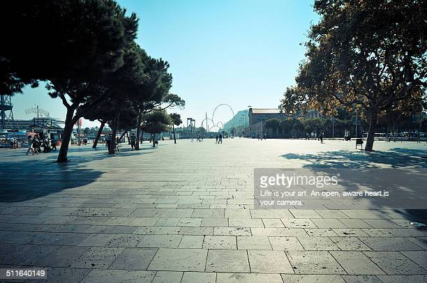 Old Port in Barcelona