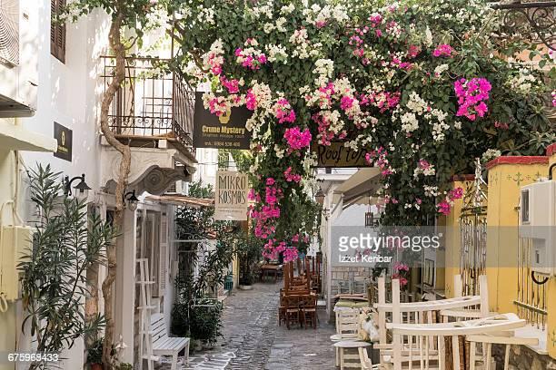 Old Port Skiathos island, Sporades, Greece