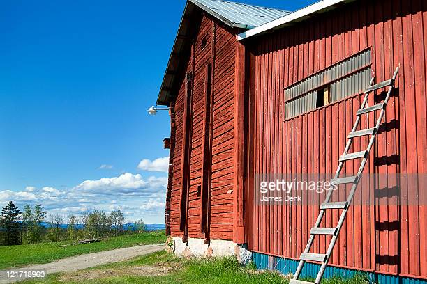 old red barn and ladder at the moose garden in ostersund, sweden - östersund stock-fotos und bilder