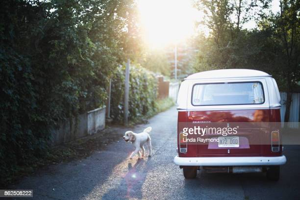 Old red Volkswagen van at sunset in an alley