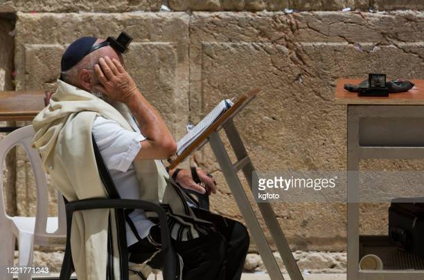 old religious jewish man with tefillin, yarmulke praying at western wall, wailling wall, kotel in jerusalem old city. israel - jewish prayer shawl stock pictures, royalty-free photos & images