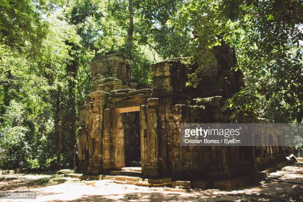 old ruin against trees - bortes stock pictures, royalty-free photos & images