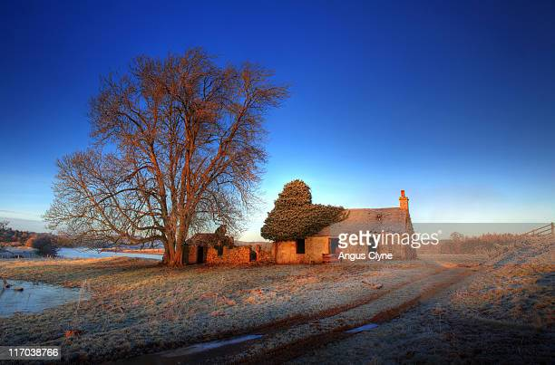 Old ruined house at morning