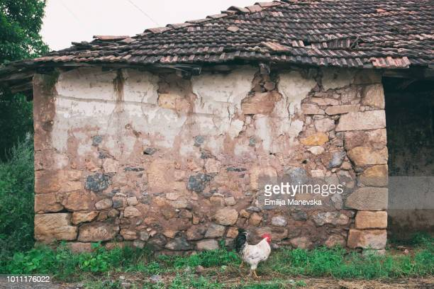 old rustic house wall - macedonia country stock pictures, royalty-free photos & images