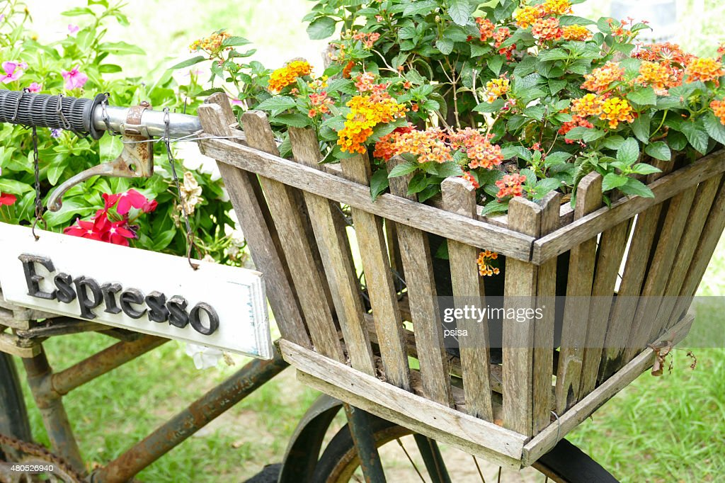 old rusty black bicycle with flower pot in wooden basket : Stock Photo