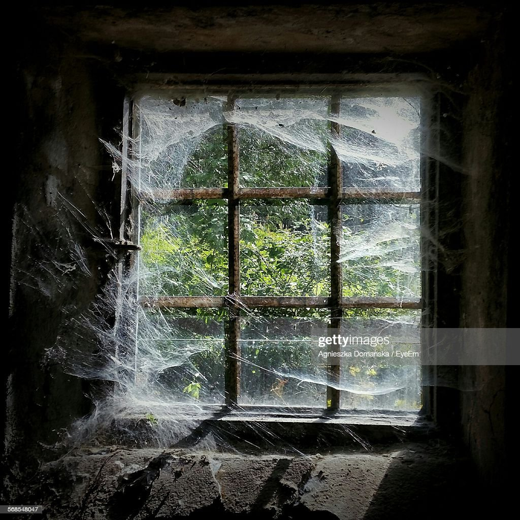 Old Rusty Metal Window With Spider Web : Stock Photo