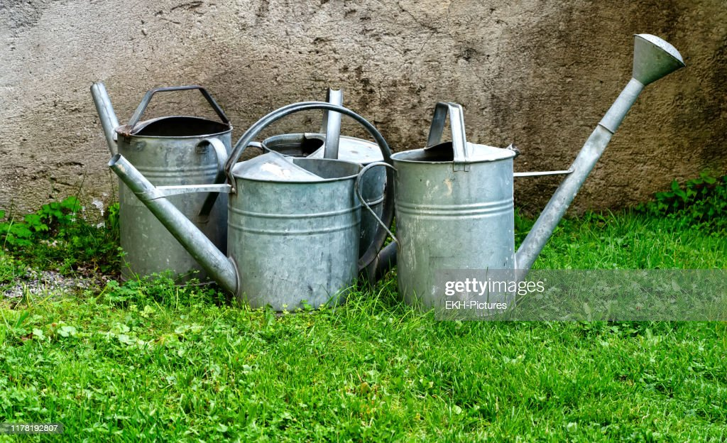 Old sheet metal watering cans on grass : Stock Photo