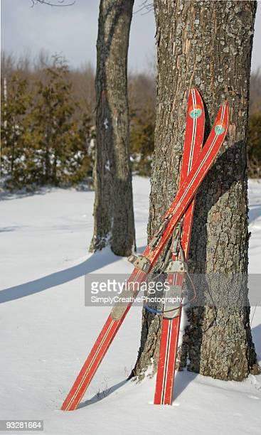 Old Ski's