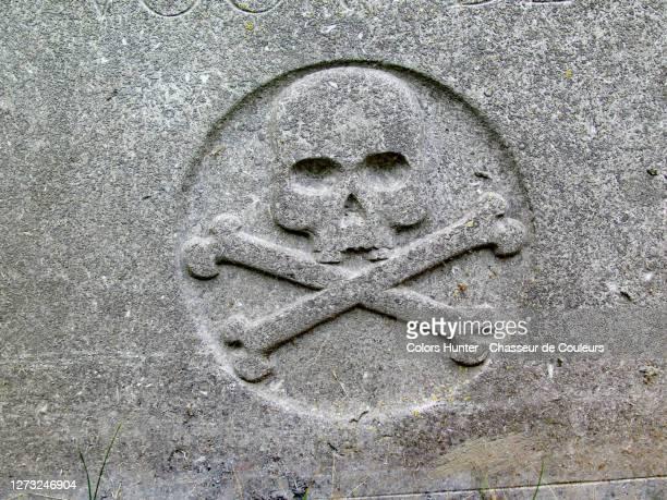 old skull and crossbones on an abandoned grave in brussels - túmulo - fotografias e filmes do acervo