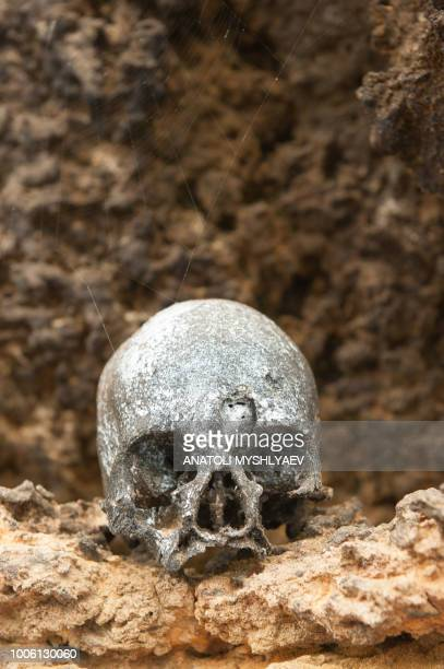 old skull (varying compositions) - indiana jones stock pictures, royalty-free photos & images