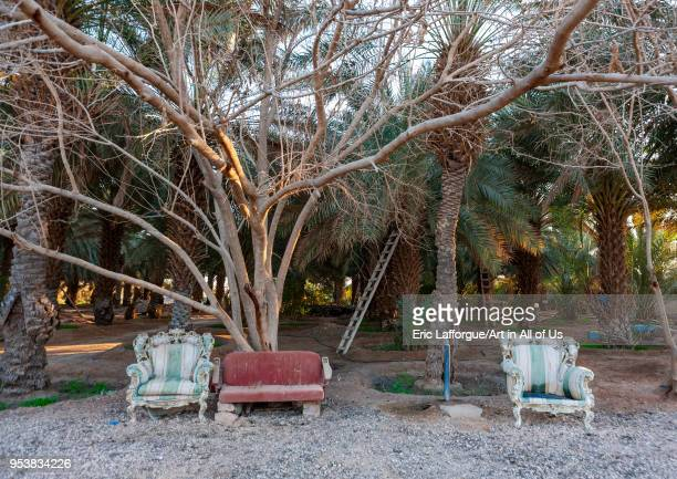 254 Saudi Arabia Garden Photos And Premium High Res Pictures Getty Images
