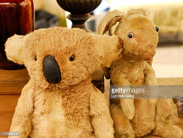 old soft koala and rabbit toys for sale - lyn holly coorg stock-fotos und bilder