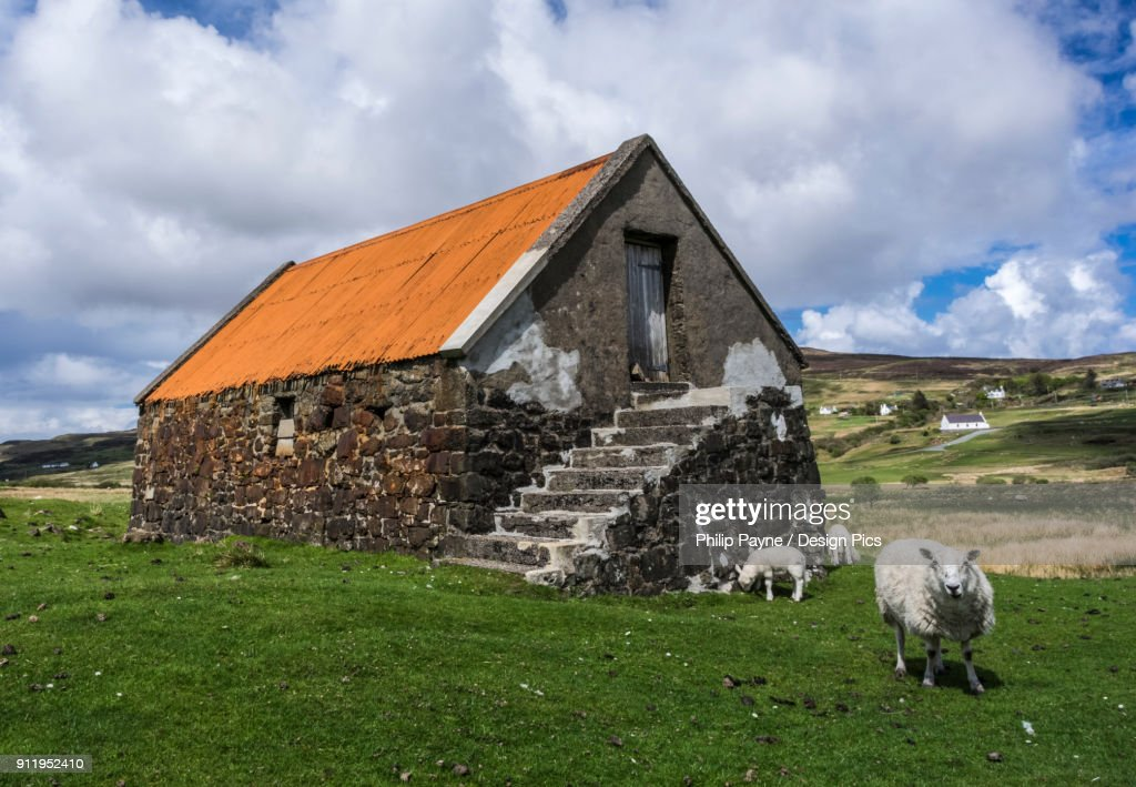 Old Stone Barn With Orange Roof And Grazing Sheep Stock Photo