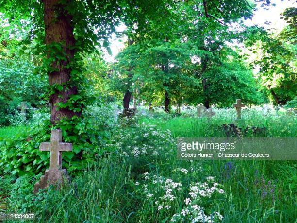 old stone cross covered by grass in brompton cemetery - 埋葬地 ストックフォトと画像
