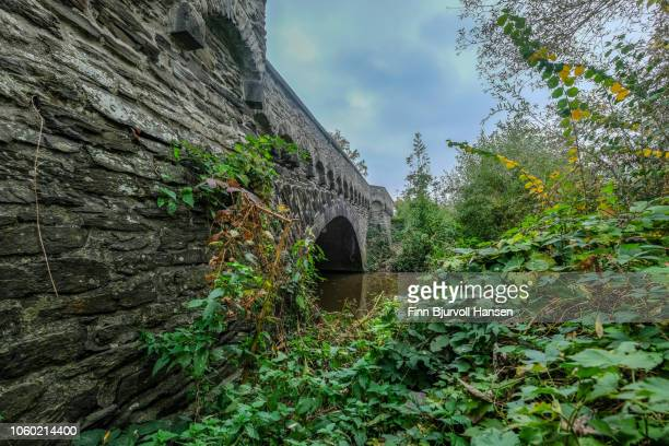 old stonebridge connecting mosel islands with mainland in mosel valley germany - finn bjurvoll stock photos and pictures