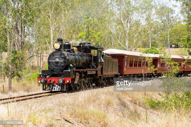 old stream train travelling through the bush - trainold stock pictures, royalty-free photos & images