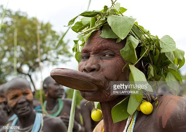 Old Surma woman with a lip plate wearing a tree leaf headdress in Kibbish village Omo valley Ethiopia on July 04 2010 Piercing and lip plates are a...