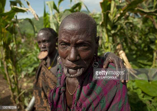 Old Surma woman with a stretched lip in Turgit village Omo valley Ethiopia on July 04 2010 Piercing and lip plates are a strong part of the Suri...