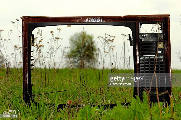 Old television on a field watching a tree