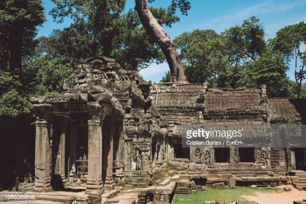 old temple against trees - bortes stock pictures, royalty-free photos & images