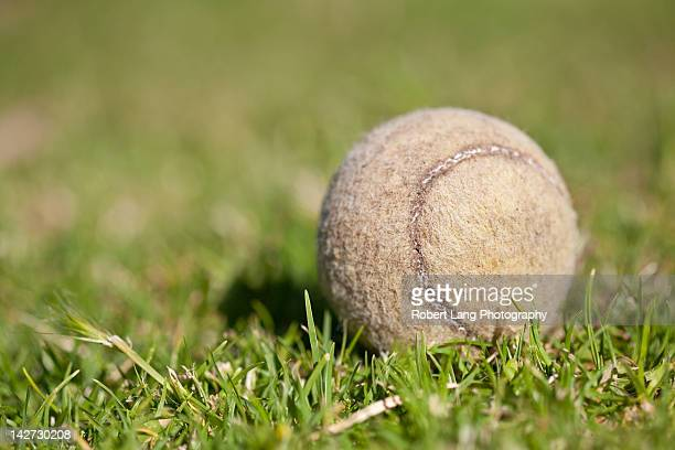 old tennis ball on grass - tennis ball stock pictures, royalty-free photos & images