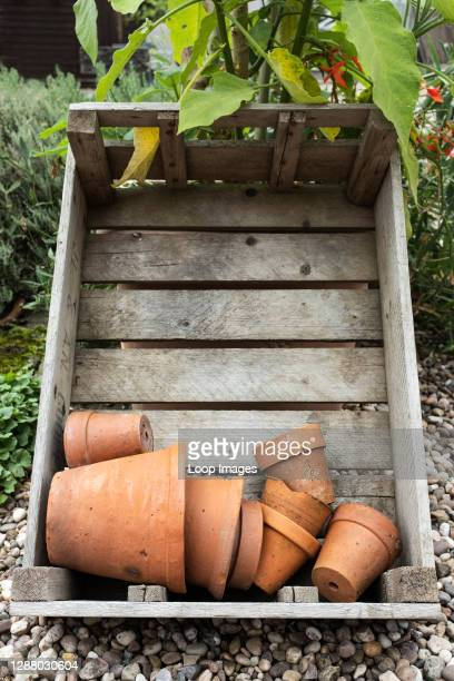 Old terracotta pots in a wooden crate.