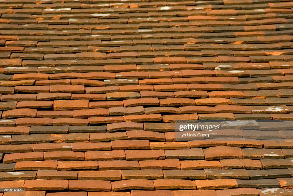 Old terracotta tiles on roof : ストックフォト