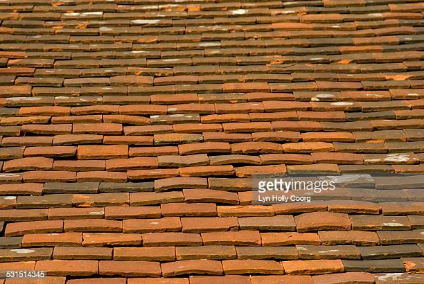 old terracotta tiles on roof - lyn holly coorg stock photos and pictures