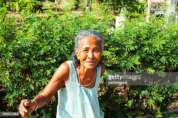 old thai senior in countryside - editorial stock pictures, royalty-free photos & images