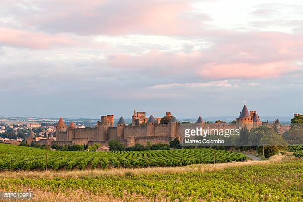 Old town and vineyards at sunrise, Carcassonne