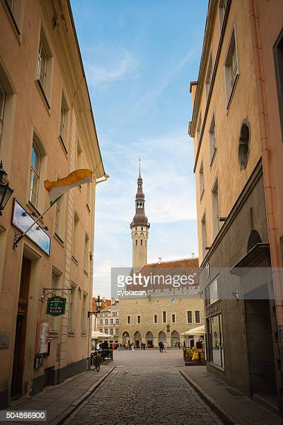 old town of tallinn, estonia - syolacan stock pictures, royalty-free photos & images