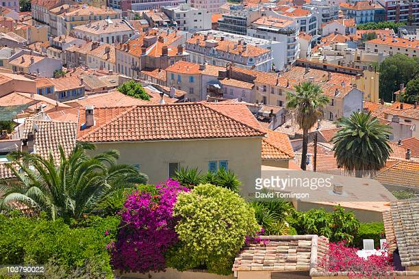 old town rooftops from parc castel ste-claire, hyeres. - claire castel stock-fotos und bilder