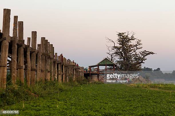 old tree and hut on u bein bridge - merten snijders - fotografias e filmes do acervo