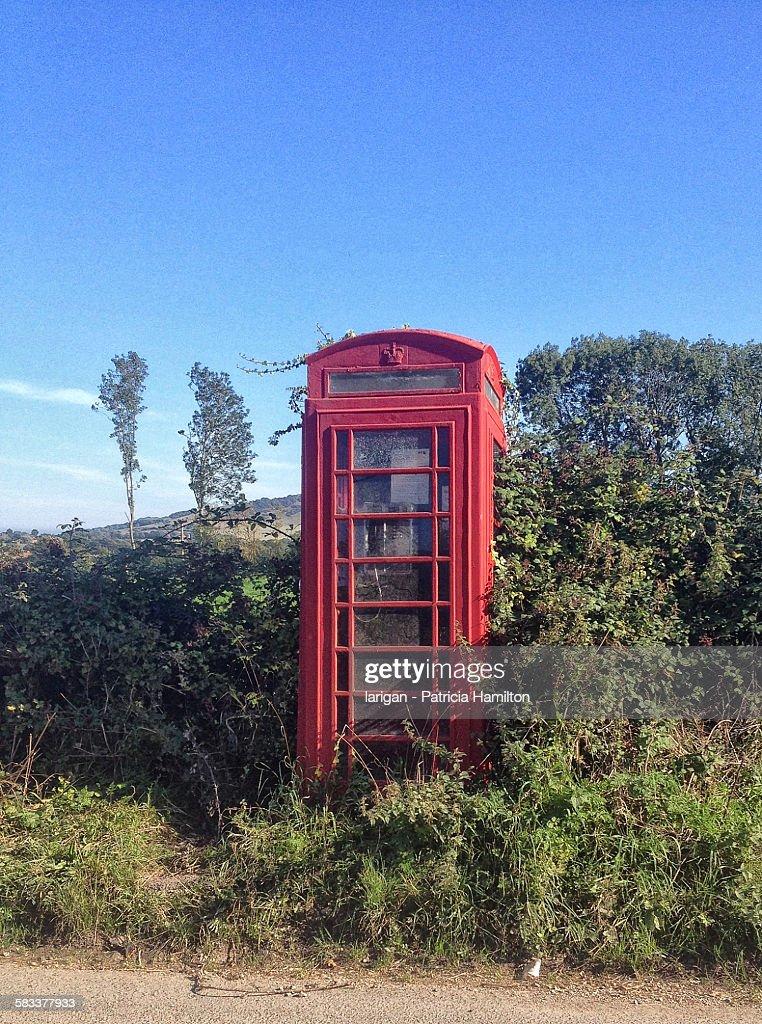 Old type of telephone box, overgrown : Stock Photo