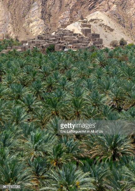 Old village in the middle of an oasis Ad Dakhiliyah u200dGovernorate Birkat Al Mouz Oman on May 11 2018 in Birkat Al Mouz Oman