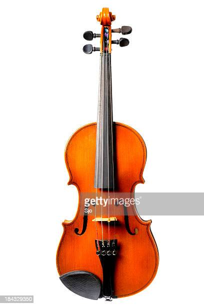 Old Violin on white