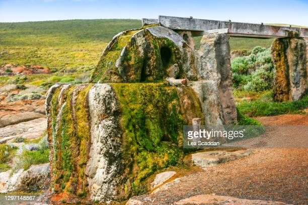 old water wheel - sea stock pictures, royalty-free photos & images