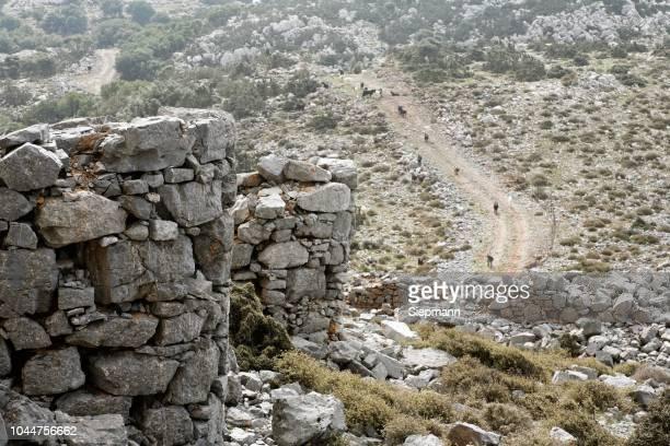 Old windmills, Tzermiadon (Tzermiado), Lasithi Plateau, Eastern Crete, Greece