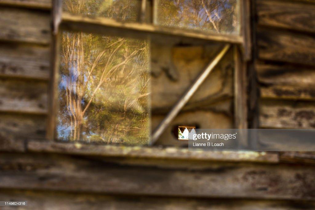 Old Window : Stock Photo