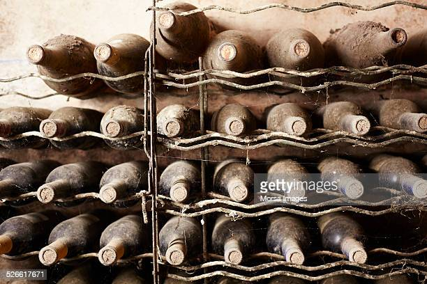 old wine bottles - ワインセラー ストックフォトと画像