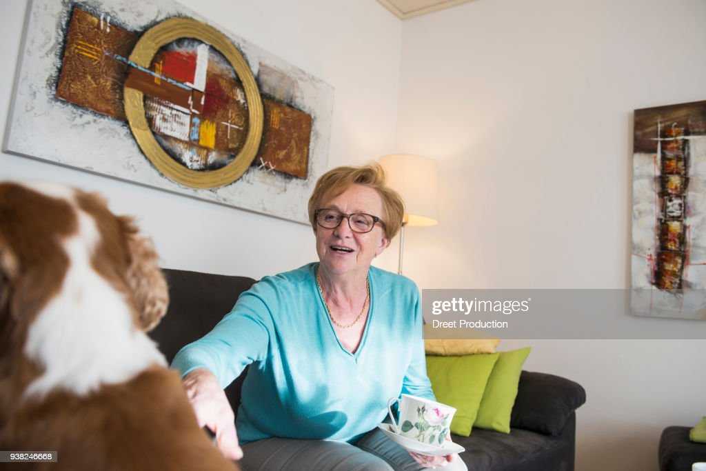 Old woman and pet dog sitting on sofa at home : Stock Photo