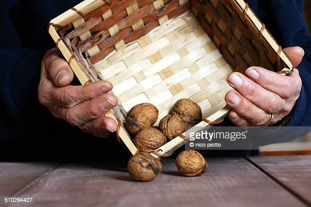 Old Woman Hands with a wood basket of nuts