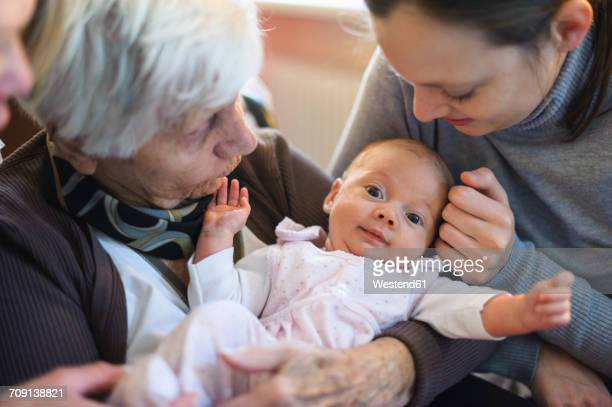 old woman meeting her great granddaughter - great granddaughter stock photos and pictures