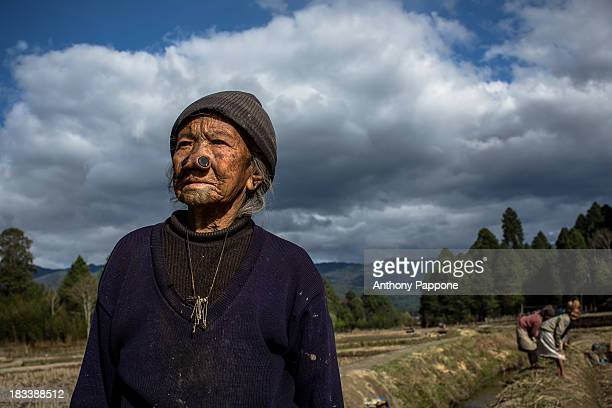 CONTENT] old woman of the apatani tribe with nose pierced to work in the rice fields in ziro village arunachel pradesh india