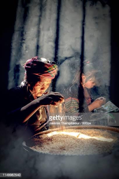 old woman vietnamese farmer are picking grain to prepare in the - 地形 ストックフォトと画像